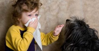 Early Exposure to Pets Does Not Increase Children's Risk of Allergies